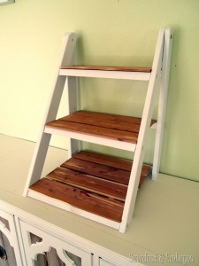 mini ladder